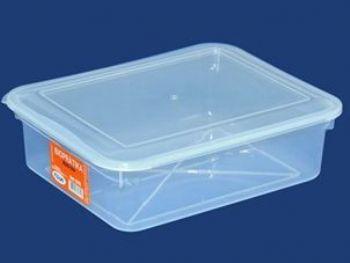 CAIXA PLAST 29,6cmx23,5cmx8,8cm C/TP FECH TRANSP 4L PLEION 0315